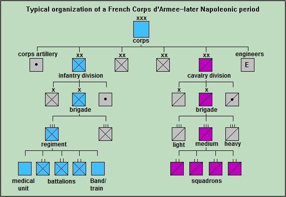 While corps and divisional strengths varied widely, a typical infantry battalion contained  400-600 men, cavalry squadrons 100-300. (adapted from Chandler, The Campaigns of Napoleon)